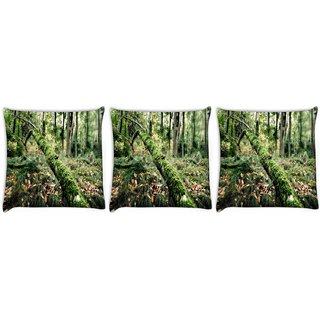 Snoogg Pack Of 3 Fallen Tree Digitally Printed Cushion Cover Pillow 12 x 12 Inch