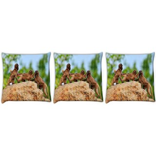 Snoogg Pack Of 3 Monkey Fighting Digitally Printed Cushion Cover Pillow 12 x 12 Inch
