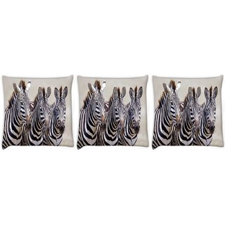 Snoogg Pack Of 3 Baby Zebra Digitally Printed Cushion Cover Pillow 12 x 12 Inch