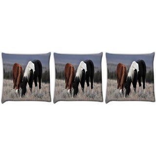 Snoogg Pack Of 3 Black And Brown Horse Digitally Printed Cushion Cover Pillow 12 x 12 Inch