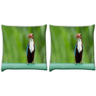 Snoogg Pack Of 2 Kingfisher Bird Digitally Printed Cushion Cover Pillow 14 x 14 Inch