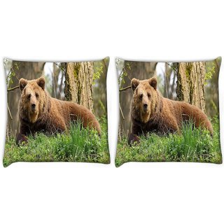 Snoogg Pack Of 2 Aged Bear Digitally Printed Cushion Cover Pillow 14 x 14 Inch