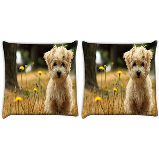 Snoogg Pack Of 2 Dog Watching The Flowers Digitally Printed Cushion Cover Pillow 14 x 14 Inch