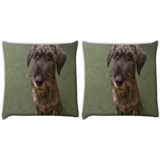 Snoogg Pack Of 2 Dog Shocking Face Digitally Printed Cushion Cover Pillow 14 x 14 Inch