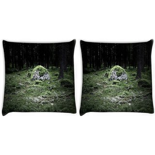 Snoogg Pack Of 2 Green Grass In Stone Digitally Printed Cushion Cover Pillow 14 x 14 Inch