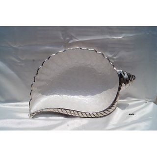 Designer Silver Metal Shell Platter/Tray in Mother of pearl (MOP)