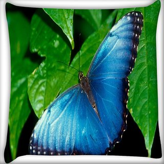 Snoogg Butterflies Wallpaper Digitally Printed Cushion Cover Pillow 18 x 18 Inch