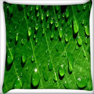 Snoogg Dew drops Digitally Printed Cushion Cover Pillow 18 x 18 Inch