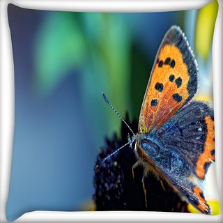 Snoogg Butterfly In Black Flower Digitally Printed Cushion Cover Pillow 18 x 18 Inch