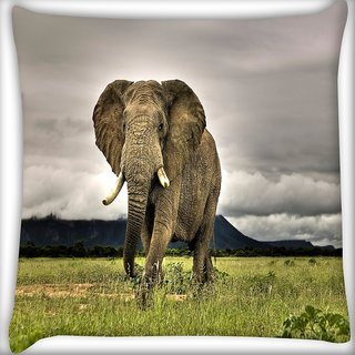 Snoogg Baby Elephant Following Digitally Printed Cushion Cover Pillow 18 x 18 Inch