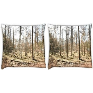 Snoogg Dried Trees Digitally Printed Cushion Cover Pillow 22 x 22 Inch