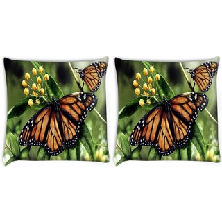 Snoogg Butterfly In A Pair Digitally Printed Cushion Cover Pillow 22 x 22 Inch