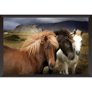 Hungover Horse Special Paper Poster
