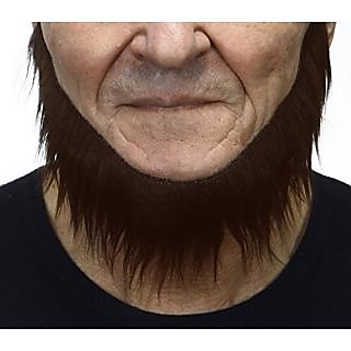 Mormon chestnut beard