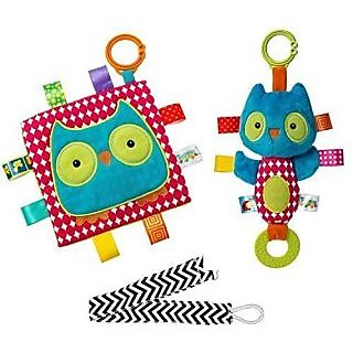 Mary Meyer Taggies Crinkle Me Owl Square and Squeaker Set with Pacifier Clip-Brightly colored soft, huggable, and whats