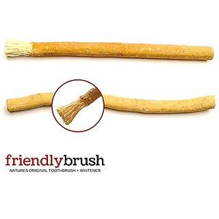 FAMILY 1 YEAR SUPPLY- Natures Original Toothbrush. Friendly Brush Miswak Toothbrush and Whitening Sticks. 1 Year Pack of