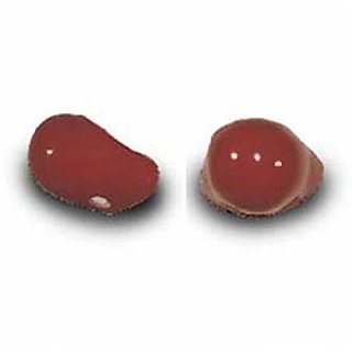 ProKnows Clown Noses - Style BC - Gloss Red