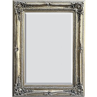 AFD Home 10034044 Traditional Mirror, Silver Finish