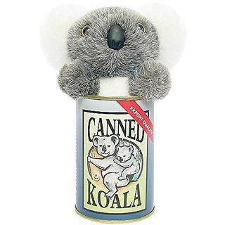 Canned Koala