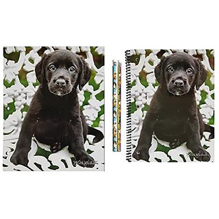 Back to School - Black Lab Puppies - Four Piece School Supply Bundle: One Glossy 2-Pocket Portfolio Folder, One 80 Sheet