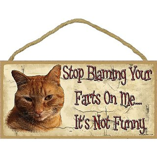 Orange Tabby Stop Blaming Your Farts On Me Cat Sign Plaque 5