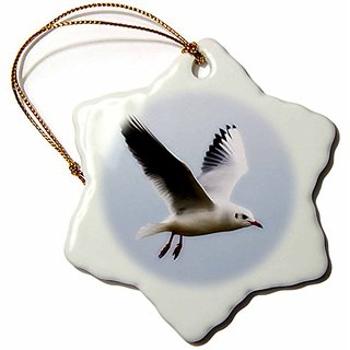 3dRose orn_47240_1 Seagull Art-Birds-Nature-Snowflake Ornament, Porcelain, 3-Inch