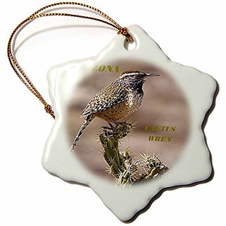 3dRose orn_50933_1 State Bird of Arizona Cactus Wren-Snowflake Ornament, Porcelain, 3-Inch