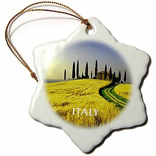 3dRose orn_80679_1 Beautiful Hills of Tuscany Italy-Snowflake Ornament, Porcelain, 3-Inch