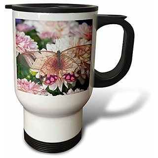 3dRose Butterfly on Flowers, Glass Wing Butterfly, Stainless Steel Travel Mug, 14-Oz