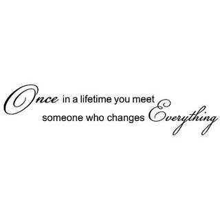 Once in a lifetime you meet someone who changes everthing Vinyl Wall Sticker Sticker Quote (22