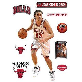 NBA Chicago Bulls Joakim Noah Wall Graphic