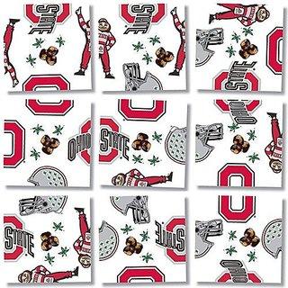 b. dazzle Ohio State University Buckeyes Scramble Squares Puzzle