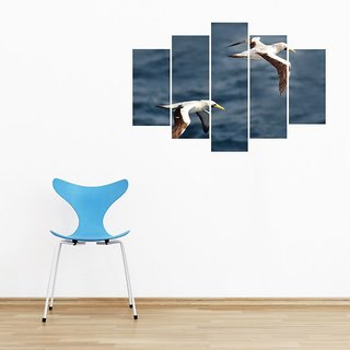 Impression Wall Blue Footed Bird Cut Out