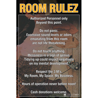 Hungover Room Rules Special Paper Poster (12x18 inches)