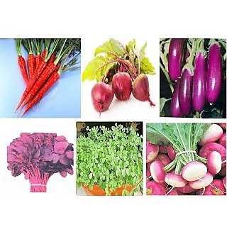 Combo Pack 6 Different Vegetable Plant Seeds