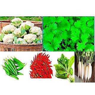 Combo Pack of 5 Different Vegetable Plant Seeds