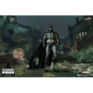 Hungover Batman Arkham City Gameplay Poster Special Paper Poster (12x18 inches)
