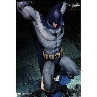 Hungover Batman Arkham City Artwork Special Paper Poster (12x18 inches)