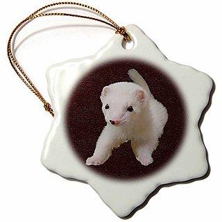 3dRose LLC Baby Albino Ferret 3-Inch Snowflake Porcelain Ornament