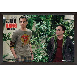 Hungover The Big Bang Theory: Sheldon  Leonard Special Paper Poster (12x18 Inches)