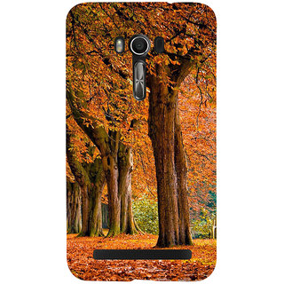 Snapdilla Bright Trees Background Beautiful Winter Autumn Leaves Scenery Phone Case For Asus Zenfone Go ZC500TG