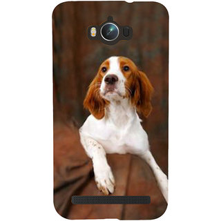 Snapdilla Bright Background Awesome Crazy Cute Hutchiko Dog Mobile Pouch For Asus Zenfone Max ZC550KL :: Asus Zenfone Max ZC550KL 2016 :: Asus Zenfone Max ZC550KL 6A076IN
