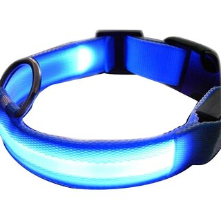 Futaba Nylon Pet Glow in Dark LED Collar Night Safety -Blue - Medium