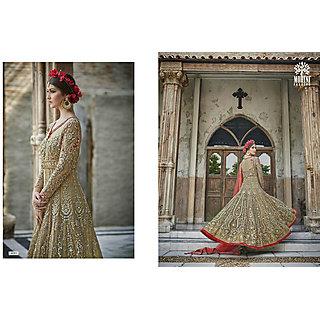 Salwar Soul Designer Beige Net Embroidery Bollywood Suits