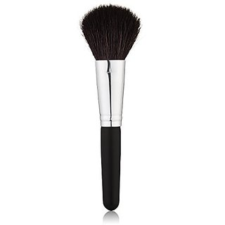 Studio Basics Blush Brush