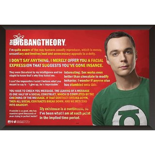 HungOver Big Bang Theory Jokes Quotes Poster Home and Office With Frame Single Piece Size (12x9  Inches)