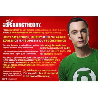 HungOver Big Bang Theory Jokes Quotes Poster Home and Office Poster  Without Frame Single Piece Size (12x9  Inches)