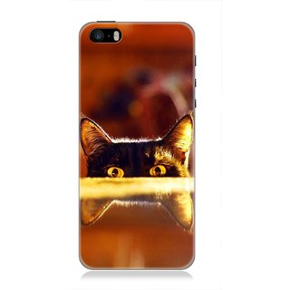 7Cr Designer back cover for Apple iPhone 5 or 5s