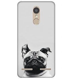 Lenovo Phab 2 Plus Printed back cover