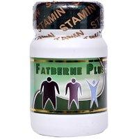 Stamin Nutrition fat burner- 60 capsules
